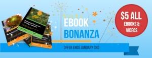 $5 ebook Bonanza1 template 1